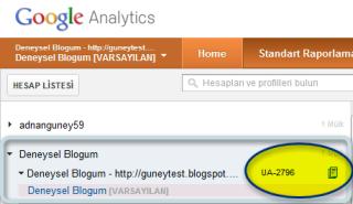 Google analytics web mülkü görüntüsü