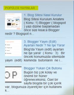Popüler yayınlar