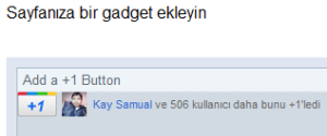 +1 Gadget