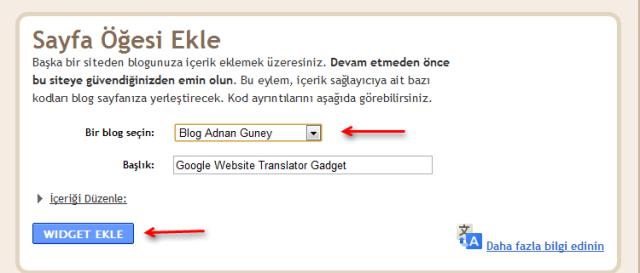 Google öğesi widget eklentisi
