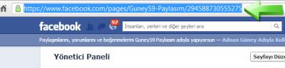 Facebook hayran (Like Box) Sayfa linki kopyalama
